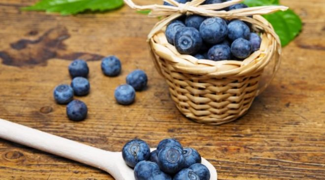 Blueberries In India