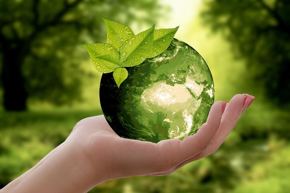 आमजन का पर्यावरण संरक्षण की दिशा में प्रयास | India Alive